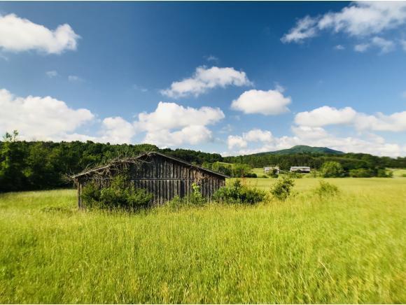 000 Orrick Lane, Greeneville, TN 37745 (MLS #421654) :: Highlands Realty, Inc.