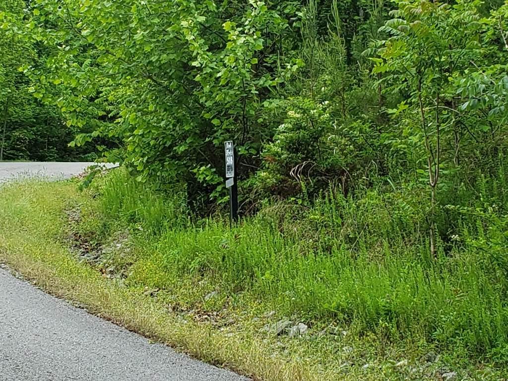 Lot 518 Mystic Star Drive - Photo 1