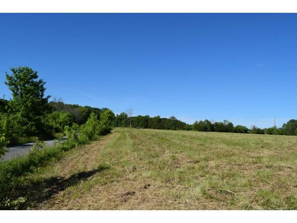 TBD Woodlawn Road, Greeneville, TN 37745 (MLS #422134) :: The Baxter-Milhorn Group