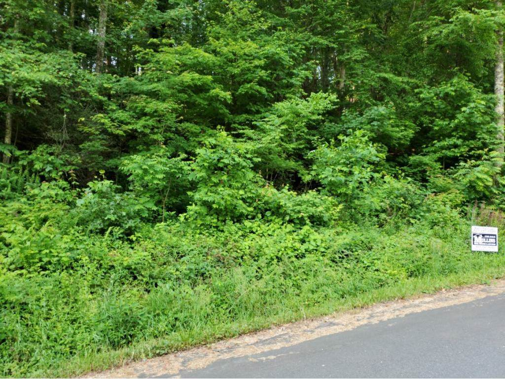 TBD Cedar - Photo 1