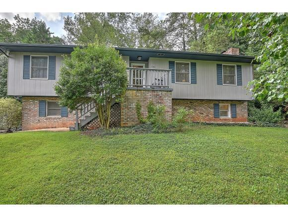 600 Foothills Road, Kingsport, TN 37663 (MLS #424624) :: Conservus Real Estate Group