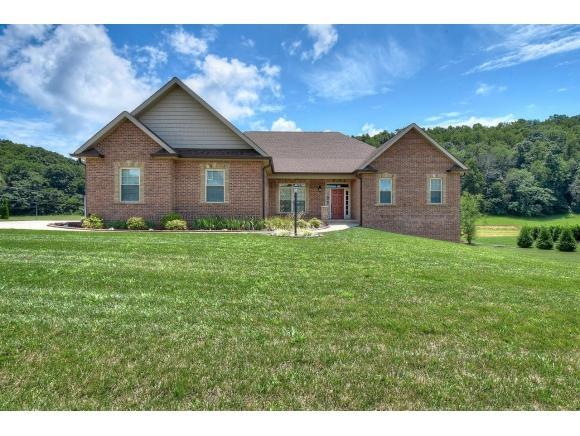 43 Shadden Springs, Johnson City, TN 37615 (MLS #424674) :: The Baxter-Milhorn Group