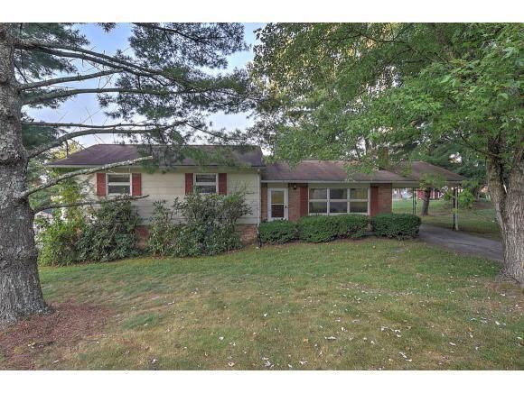 320 Green Lane, Blountville, TN 37617 (MLS #427005) :: Bridge Pointe Real Estate