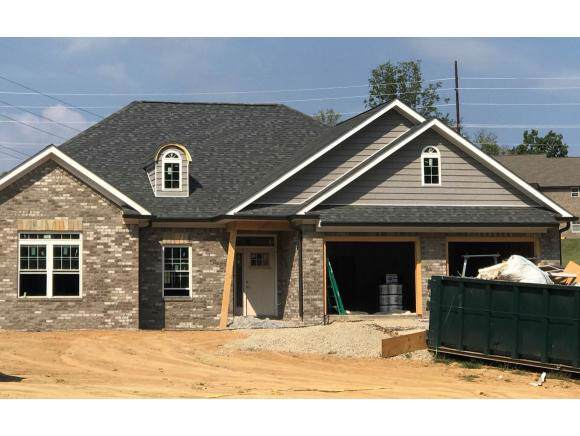390 Loafers Glory View NW #1, Johnson City, TN 37615 (MLS #427151) :: Conservus Real Estate Group