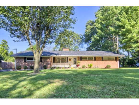 324 Meadow Lane, Kingsport, TN 37663 (MLS #427561) :: Conservus Real Estate Group
