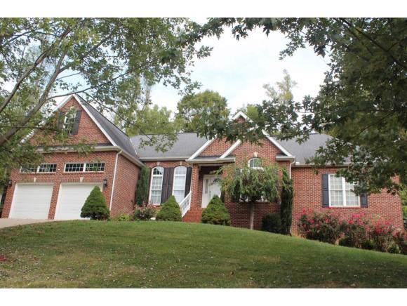 135 Polo Drive, Blountville, TN 37617 (MLS #427845) :: Bridge Pointe Real Estate