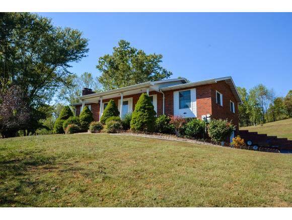 3631 Island Road, Blountville, TN 37617 (MLS #428191) :: Bridge Pointe Real Estate