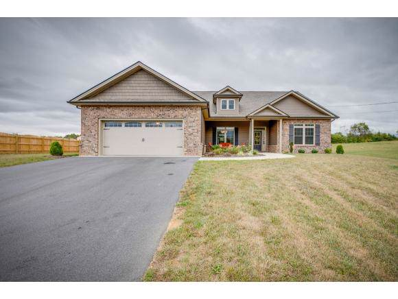 228 Old Stage Road, Johnson City, TN 37617 (MLS #428397) :: Conservus Real Estate Group