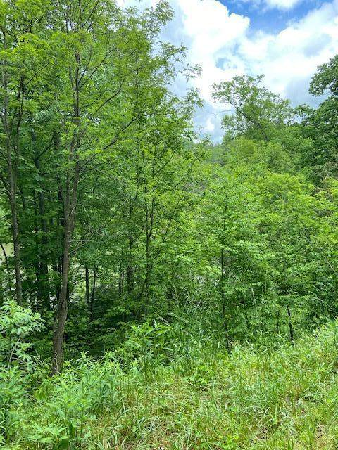Tbd Mountain Wynd Drive, Butler, TN 37640 (MLS #9908306) :: Highlands Realty, Inc.