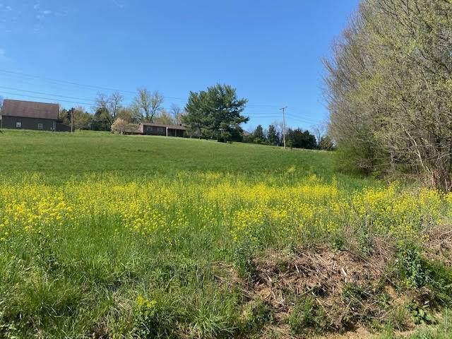 Lot 7 Carroll Creek Road, Johnson City, TN 37615 (MLS #9920854) :: Tim Stout Group Tri-Cities