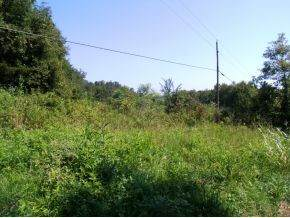 Lot 4 Poplar Springs Road - Photo 1