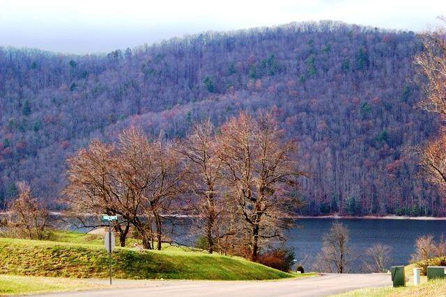 000 Forest Pointe, Lot #19, Butler, TN 37640 (MLS #356550) :: Red Door Agency, LLC