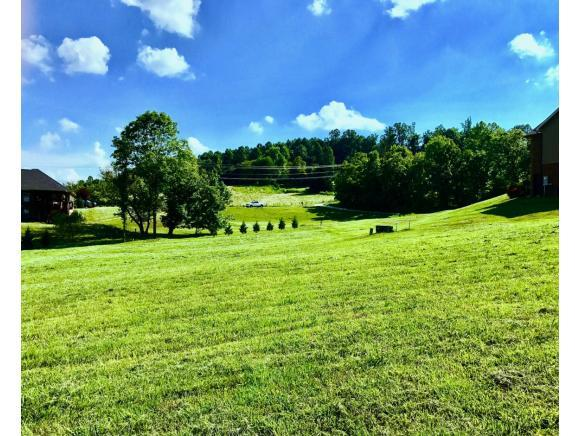 2R Free Hill Road, Gray, TN 37615 (MLS #388967) :: Highlands Realty, Inc.