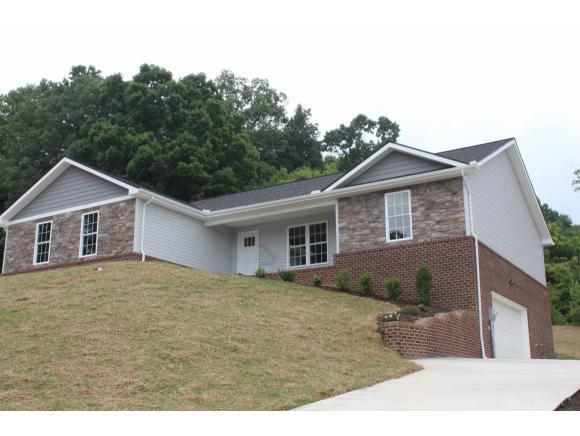 178 Fox Ridge Drive, Mt Carmel, TN 37645 (MLS #397951) :: Highlands Realty, Inc.