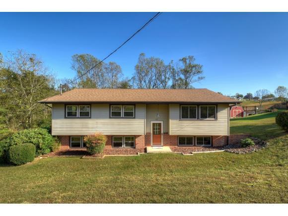 122 Bauchman Drive, Gray, TN 37615 (MLS #398664) :: Conservus Real Estate Group