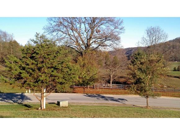 205 Old Island Trail, Kingsport, TN 37664 (MLS #399978) :: Highlands Realty, Inc.