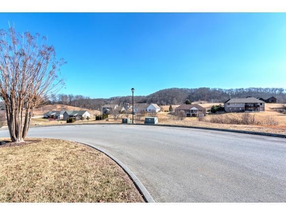 238 Sunset Ridge Blvd, Gray, TN 37615 (MLS #401120) :: Bridge Pointe Real Estate