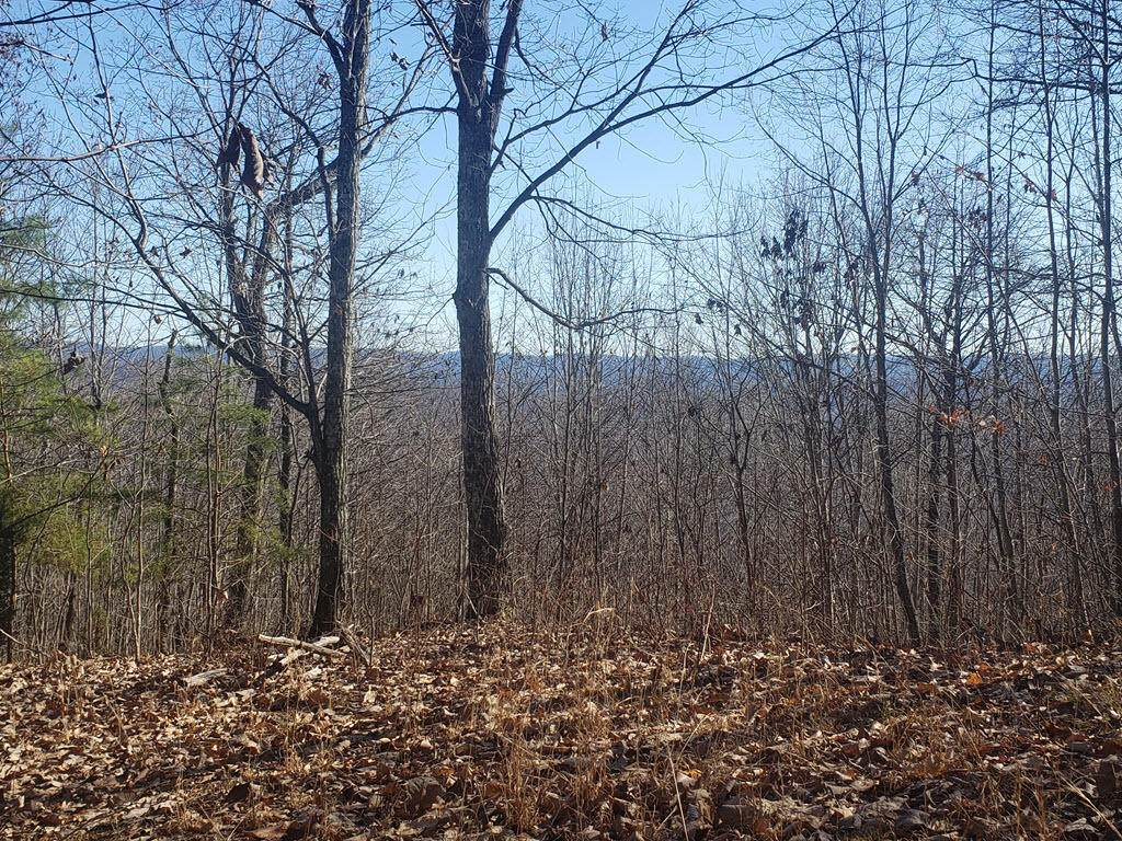 Lot 254 Red Creek Hollow - Photo 1