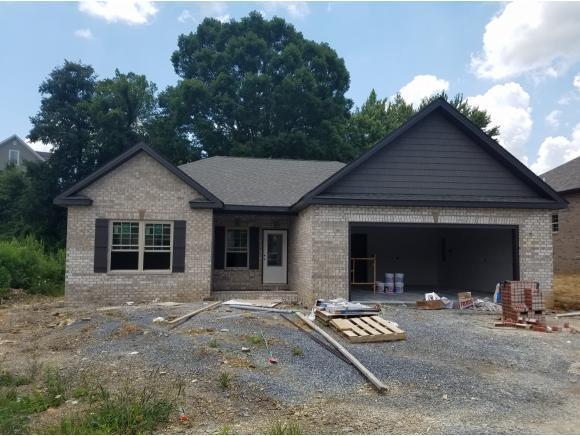 615 Nettle Tree, Johnson City, TN 37604 (MLS #405961) :: Highlands Realty, Inc.