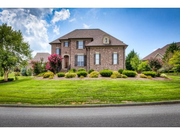 65 Sunset Meadows Court, Gray, TN 37615 (MLS #410539) :: Bridge Pointe Real Estate