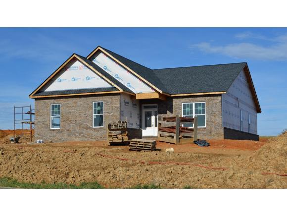 108 Eden Dr, Jonesborough, TN 37659 (MLS #415667) :: Griffin Home Group