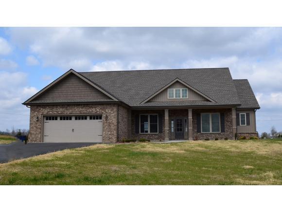 1200 Peaceful Dr, Jonesborough, TN 37659 (MLS #415672) :: Griffin Home Group