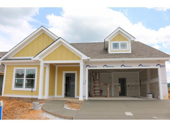 1723 Ethans Ct., Kingsport, TN 37664 (MLS #419820) :: Conservus Real Estate Group