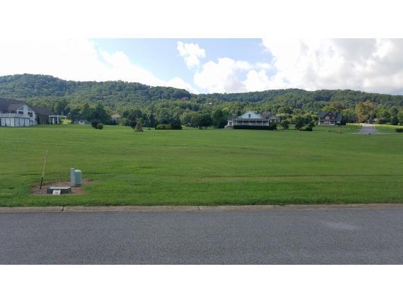 4041 Paradise Dr, Mooresburg, TN 37811 (MLS #424592) :: Highlands Realty, Inc.