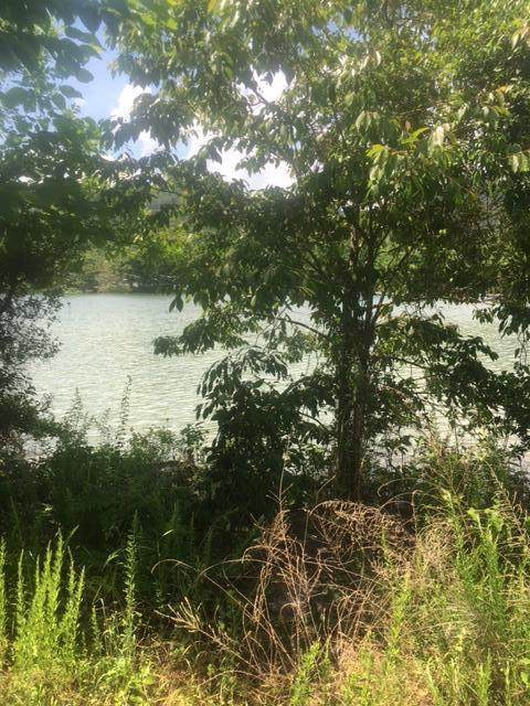 Lot 149 Nautical Point, Mooresburg, TN 37811 (MLS #9916802) :: Conservus Real Estate Group