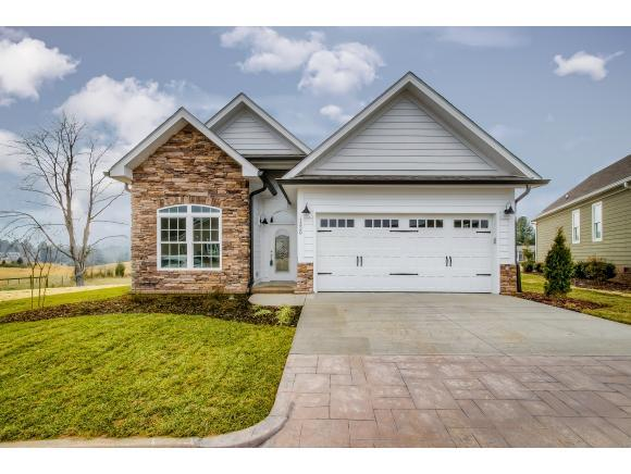 1320 Knights Bridge Circle, Kingsport, TN 37664 (MLS #397923) :: Conservus Real Estate Group