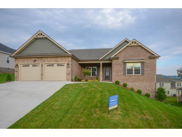 3132 London Road, Kingsport, TN 37660 (MLS #401246) :: Griffin Home Group