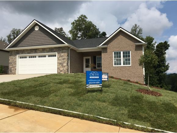 3066 Calton Hill, Kingsport, TN 37660 (MLS #401247) :: Griffin Home Group