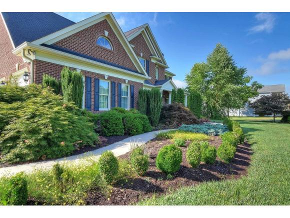 613 Harbor Point Dr, Johnson City, TN 37615 (MLS #409938) :: Griffin Home Group