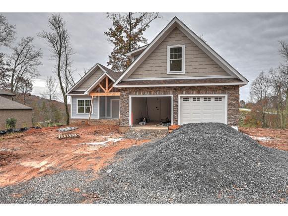 386 Golf Ridge Dr, Kingsport, TN 37664 (MLS #410005) :: Conservus Real Estate Group