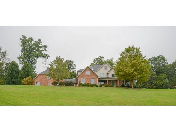 142 Hays Farm Court, Johnson City, TN 37615 (MLS #413627) :: Highlands Realty, Inc.