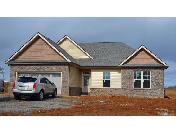 586 Sugar Hollow Rd, Telford, TN 37690 (MLS #415666) :: Conservus Real Estate Group