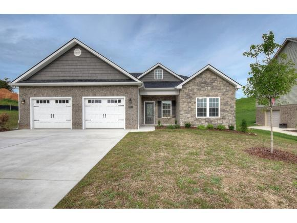 1144 Savin Falls, Gray, TN 37615 (MLS #418940) :: The Baxter-Milhorn Group