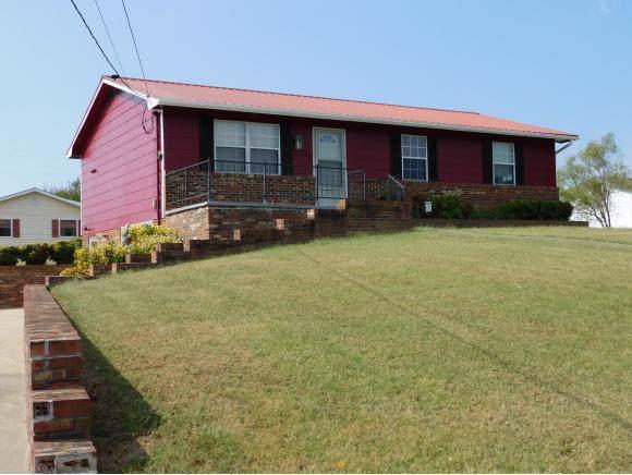 153 Guinn Drive, Greeneville, TN 37743 (MLS #425836) :: Bridge Pointe Real Estate