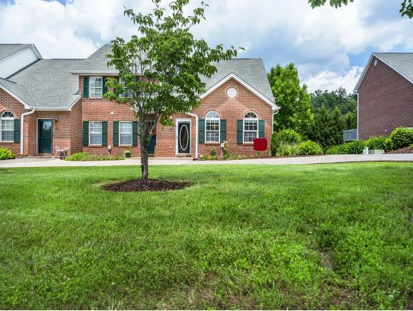 146 Eagleview Private Drive #146, Blountville, TN 37017 (MLS #388895) :: Griffin Home Group