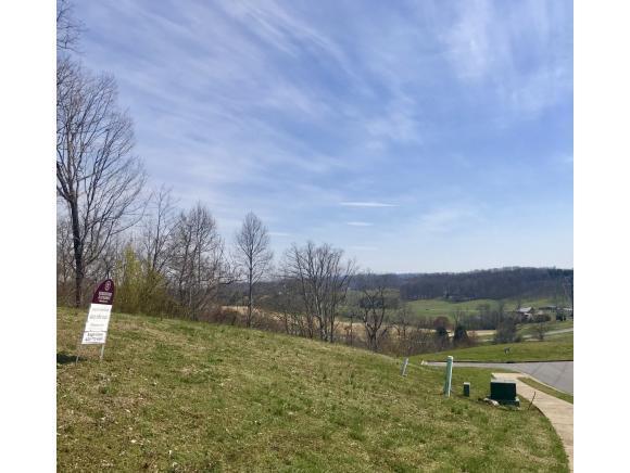 1093 Hawk Nest Court, Jonesborough, TN 37659 (MLS #418855) :: The Baxter-Milhorn Group