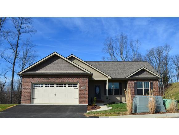 351 Mountain Creek Ct, Jonesborough, TN 37659 (MLS #410139) :: Highlands Realty, Inc.