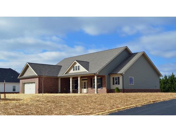 1132 Peaceful Dr, Jonesborough, TN 37659 (MLS #412065) :: Griffin Home Group
