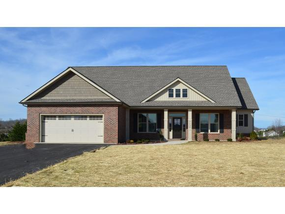 1132 Peaceful Dr, Jonesborough, TN 37659 (MLS #412065) :: Conservus Real Estate Group