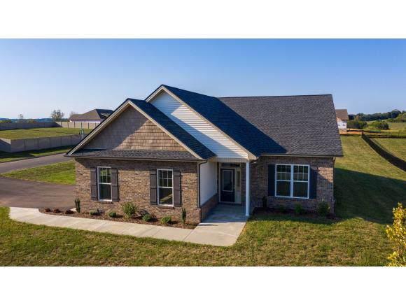 108 Eden Dr, Telford, TN 37690 (MLS #415667) :: Bridge Pointe Real Estate