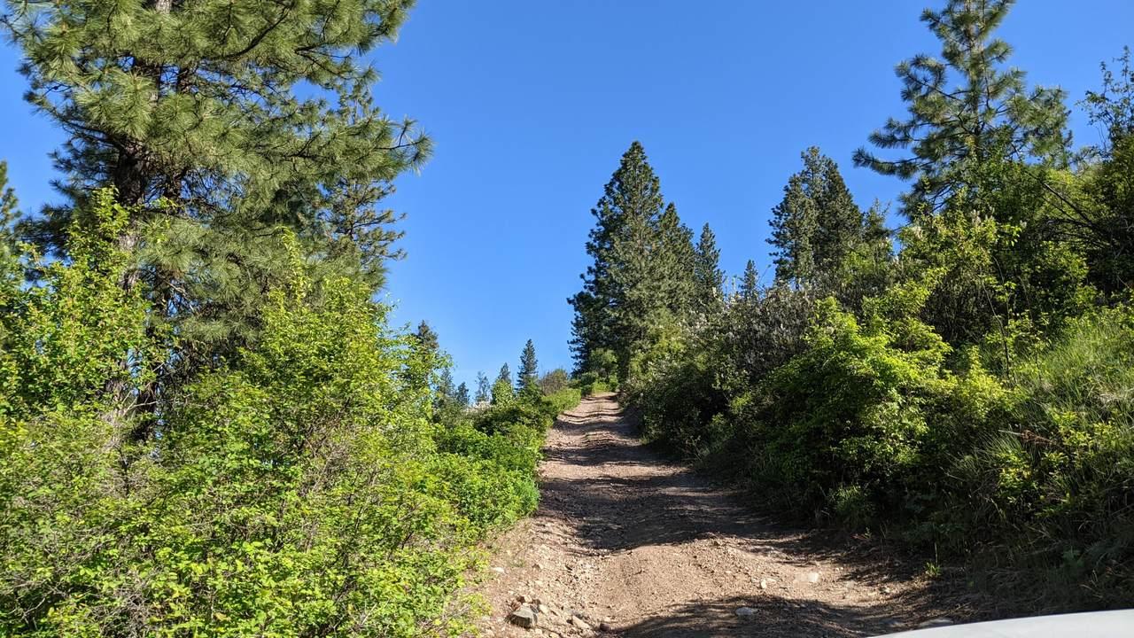 NNA Wrights Mountain #1 - Photo 1