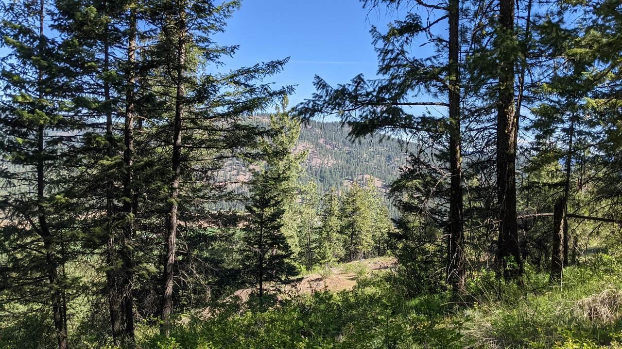 NNA Wrights Mountain #2 - Photo 1