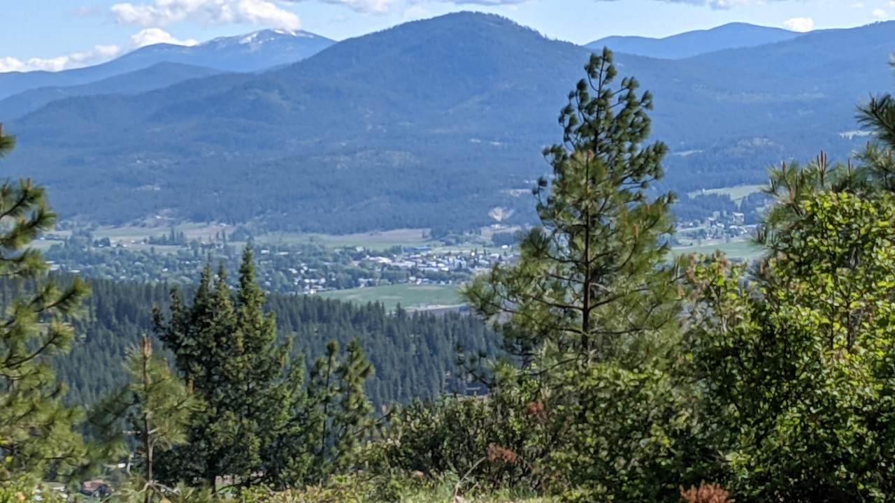 NNA Wrights Mountain #3 - Photo 1