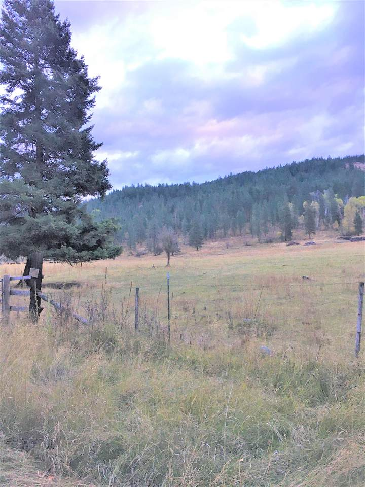 454 N Barnaby Creek Rd - Photo 1