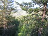 TBD Bamber Creek Rd - Photo 18