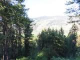TBD Bamber Creek Rd - Photo 19